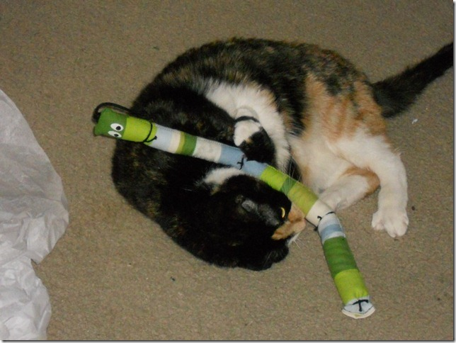 Sassafrass with the catnip snake