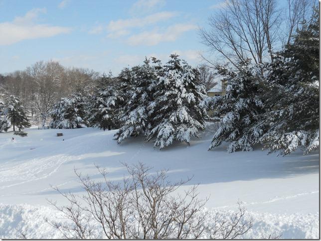 Snow III January 27, 2011