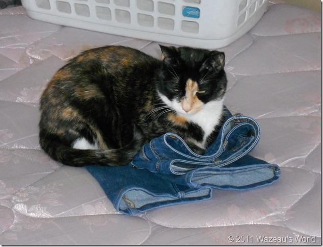 Sassafrass has her own pair.