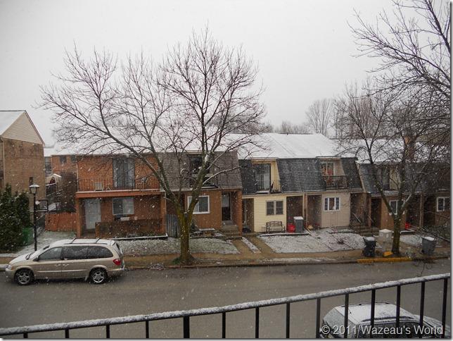 From my bedroom window, snow!